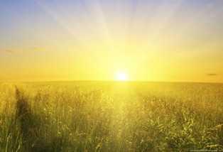 Rising golden sun-fnbworld