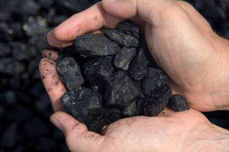 Handful of coal can damage environment-fnbworld