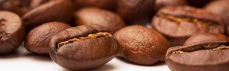 Coffee beans-fnbworld