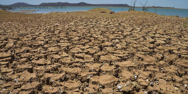 Desertification-fnbworld