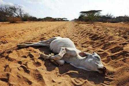 Drought-India-fnbworld