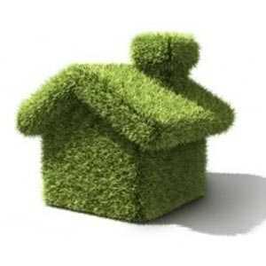 Green Building-Sunita Narain-fnbworld