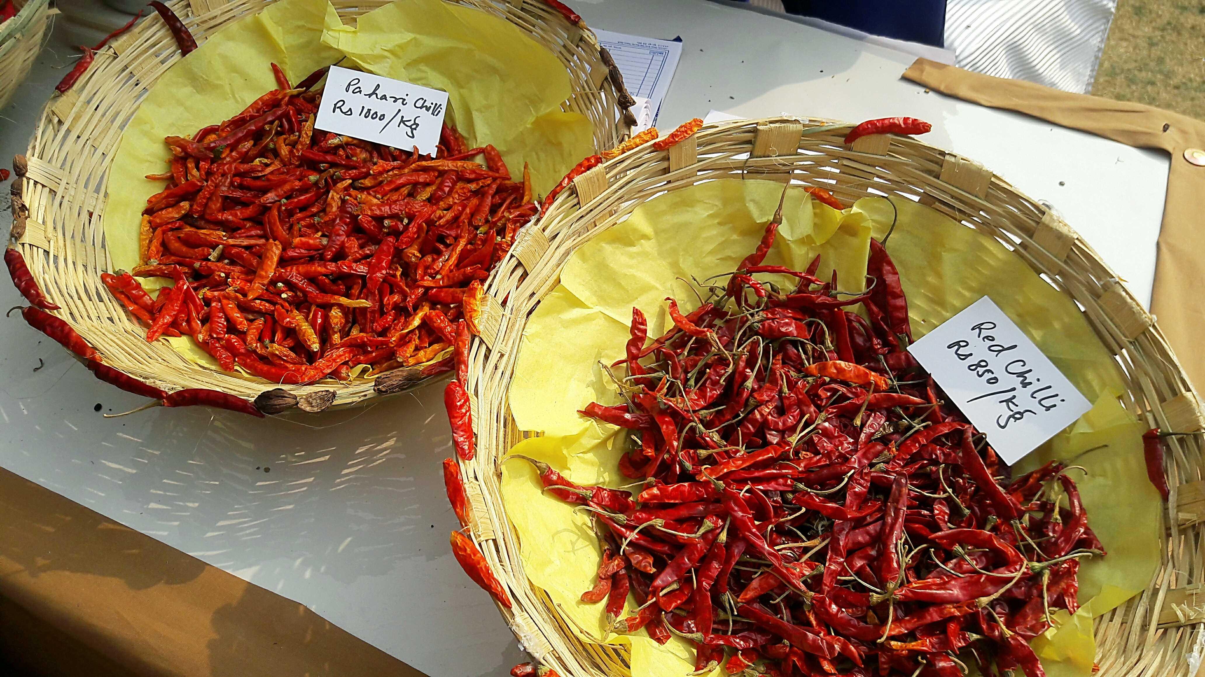Organic red chillies-fnbworld