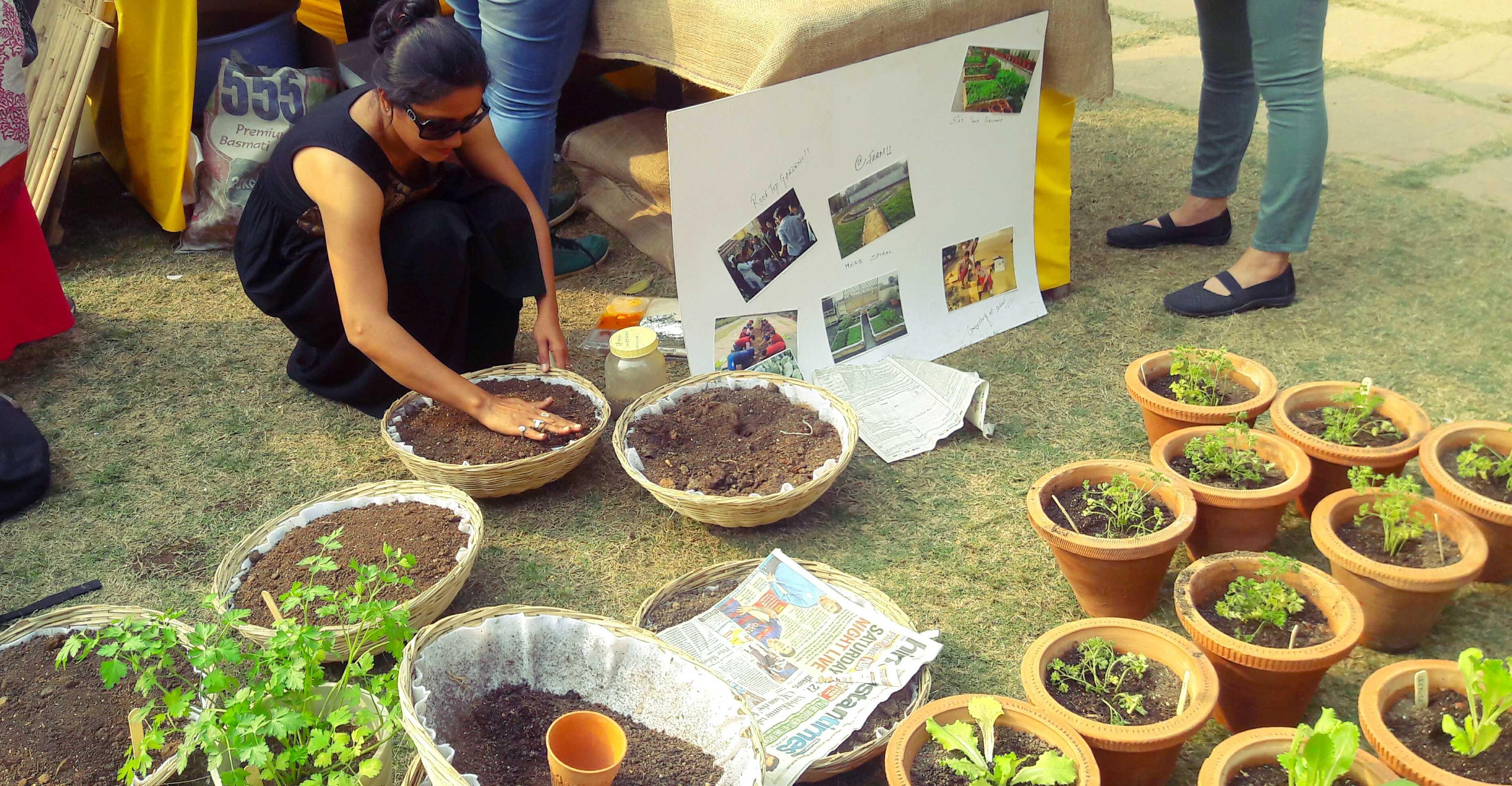 Fresh produce at organic fair by cse
