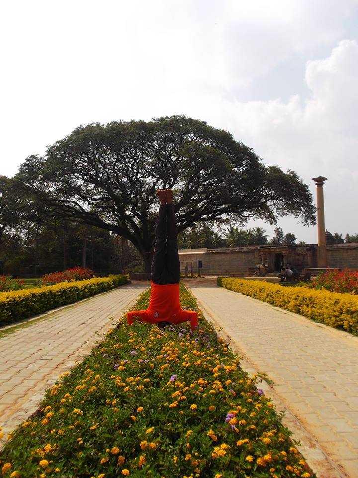 Flowering of Badari Narayan-fnbworld