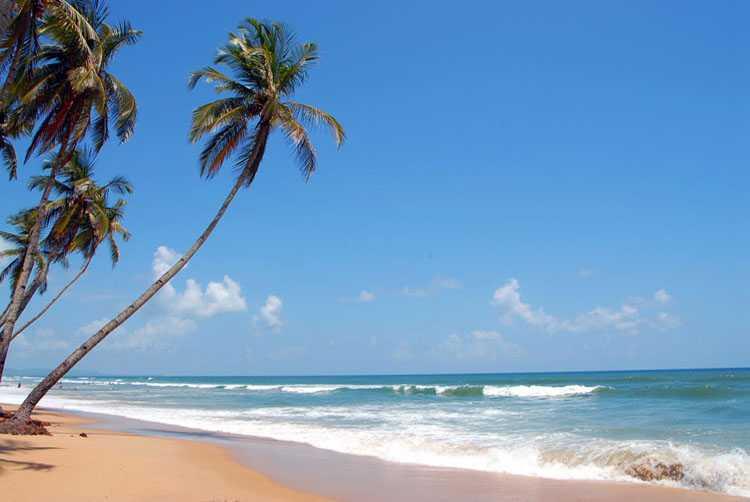 Serene beaches-Goa-fnbworld