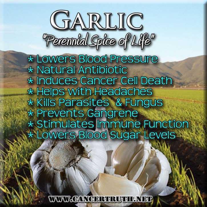 Benefits of garlic-fnbworld-chaitali aggarwal