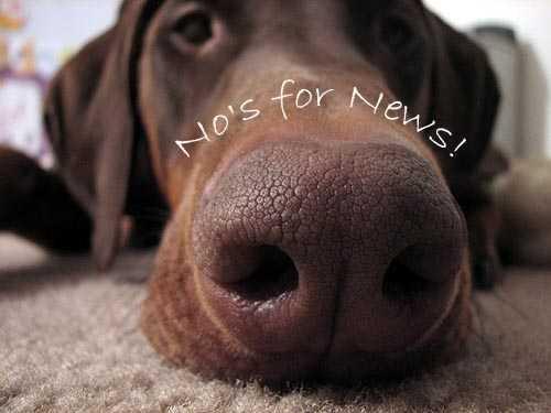 No for News!  fnbworld