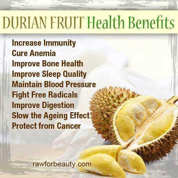 Durian fruit for health-fnbworld