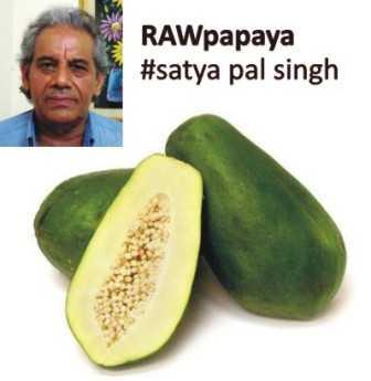 RAWpapaya by Satya Pal Singh-fnbworld