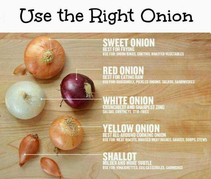 Shallots and onions-fnbworld
