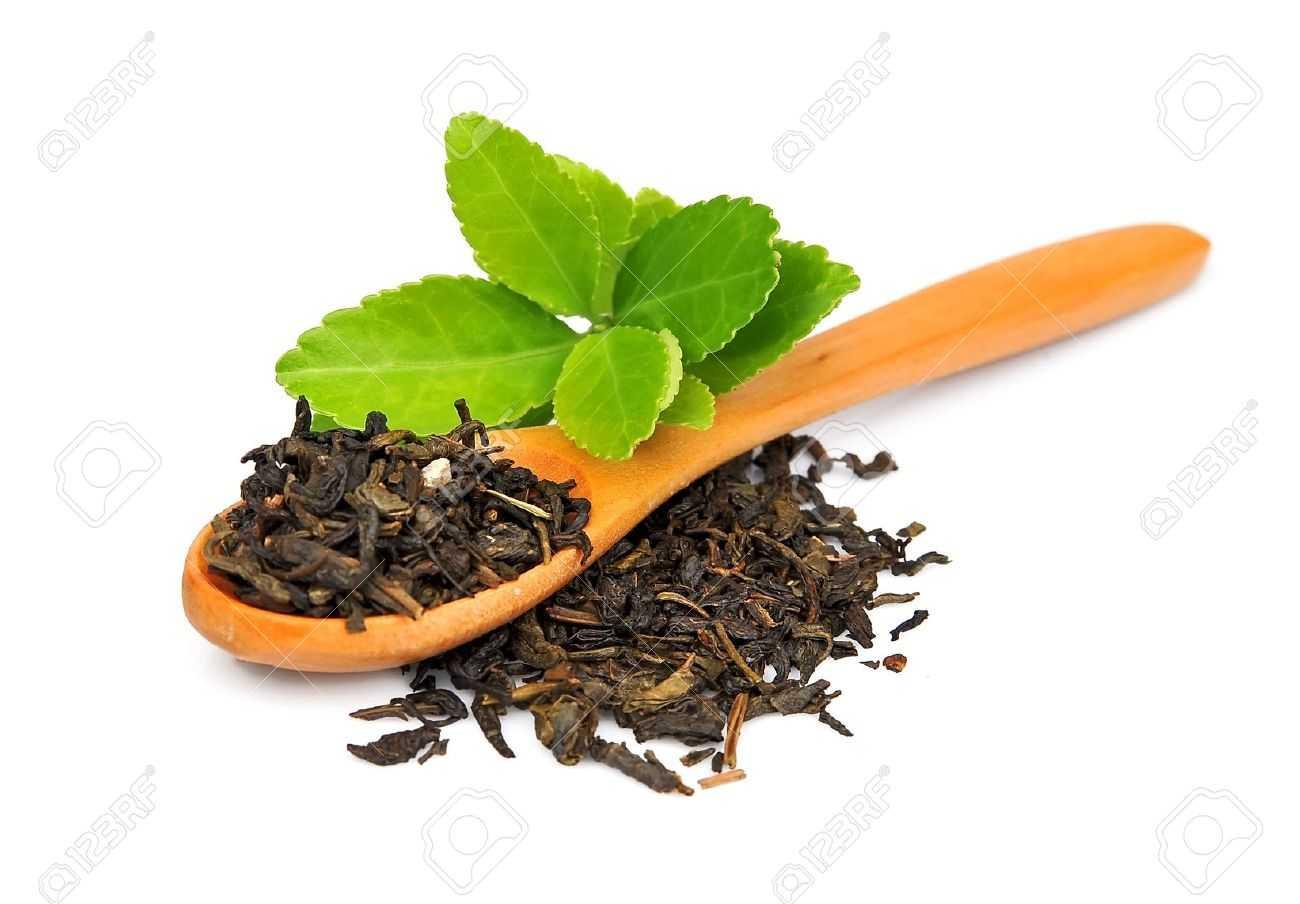 Tea and herbs - nazuk ahluwalia-fnbworld
