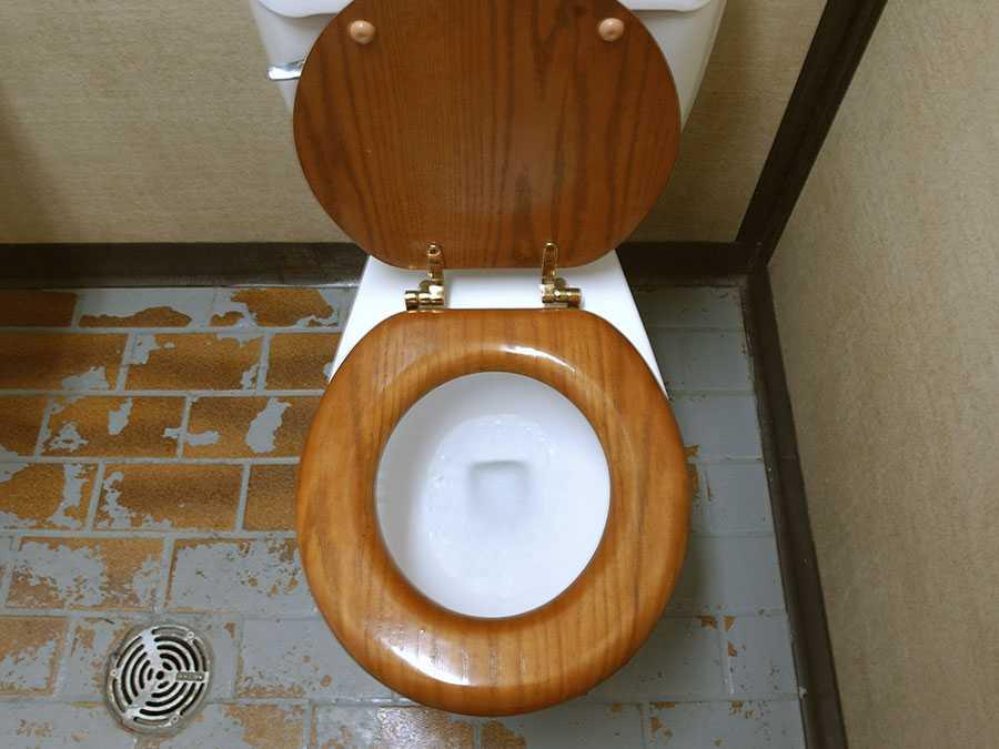 Toilets style-fnbworld