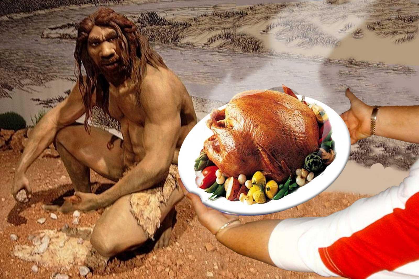 Cavemen diet on anvil?