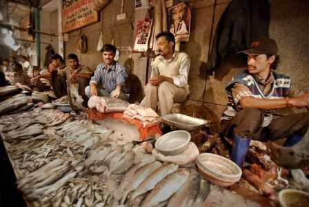 cr park fish market