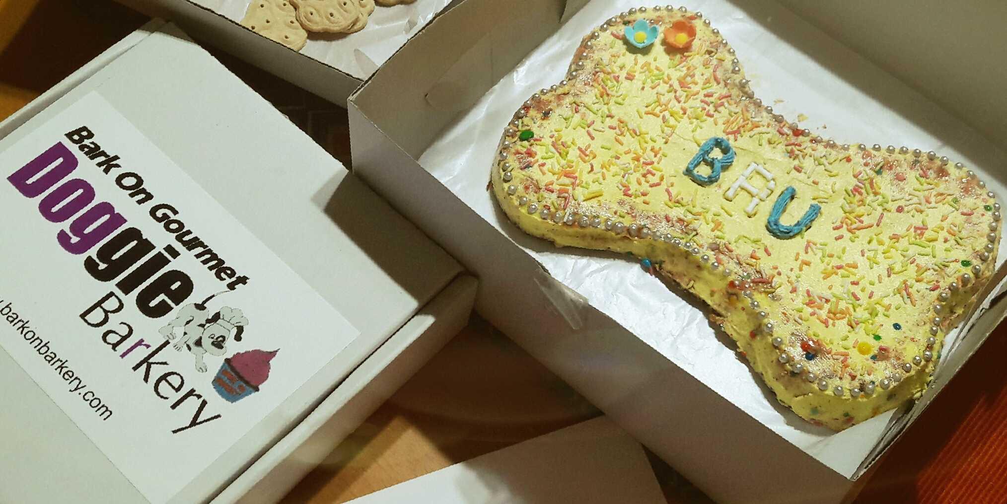 Gourmet dog cakes by bark On Bakery-fnbworld-ridhi chhabra